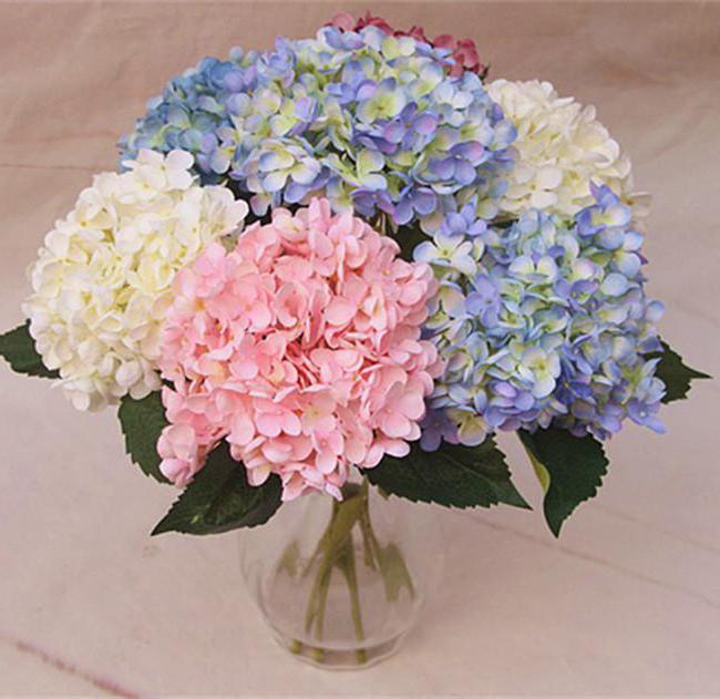 fc77269dd Teraz budeme vysvetľovať úlohu, ktorú zohráva kytica v kytici. Jeho hodnota  v Rusku je stabilná od staroveku. Tieto kytice prinášajú na dovolenku, ...